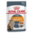 Royal Canin Intense Beauty in Gelei