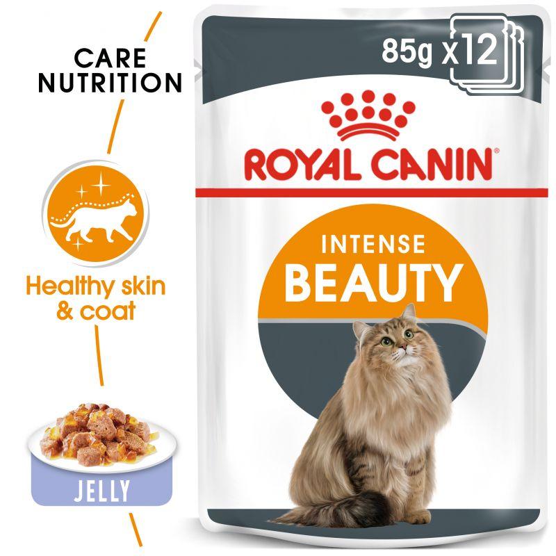 Royal Canin Intense Beauty in Jelly
