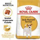 Royal Canin Jack Russel Terrier Adult pour chien