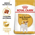 Royal Canin Jack Russell Terrier Adult pour chien
