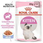 Royal Canin Kitten в желе