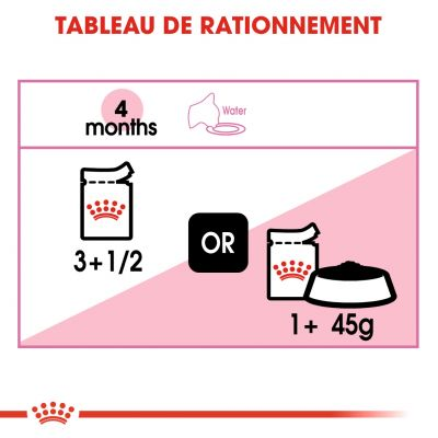 Royal Canin Kitten en gelée