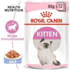 Royal Canin Kitten i gelé