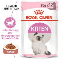 Royal Canin Kitten in Soße