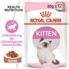 Royal Canin Kitten in Sosse