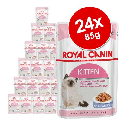 Royal Canin Urinary Care Cat Food 85g Amazon Co Uk Pet Supplies