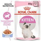 Royal Canin Kitten Instinctive în gelatină Hrană umedă