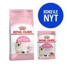 Royal Canin Kitten -kokeilupakkaus