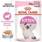 Royal Canin Kitten Mousse Hrană umedă