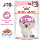 Royal Canin Kitten w galarecie
