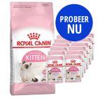 Royal Canin Kittenvoeding: 400 g Kitten Droogvoer + 12 x 85 g Kitten Instinctive Natvoer