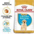 Royal Canin Labrador Retriever Puppy/Junior