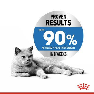 Royal Canin Light Weight Care в желе