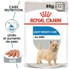 Royal Canin Light Weight Care comida húmida para cães