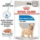 Royal Canin Light Weight Care umido