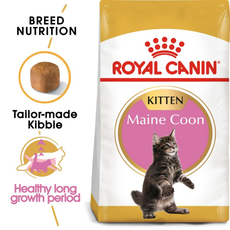 Royal Canin Maine Coon Kitten Reviews Zooplus Co Uk