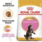 Royal Canin Maine Coon Kitten Hrană uscată