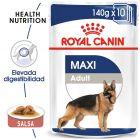Royal Canin Maxi Adult comida húmeda para perros