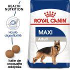 Royal Canin Maxi Adult pour chien