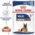 Royal Canin Maxi Ageing comida húmeda para perros