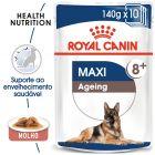 Royal Canin Maxi Ageing comida húmida para cães