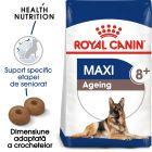 Royal Canin Maxi Ageing 8+ Hrană uscată