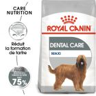 Royal Canin Maxi Dental Care pour chien
