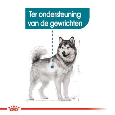 Royal Canin Maxi Joint Care Hondenvoer
