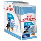 Royal Canin Maxi Puppy консервирана храна