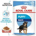 Royal Canin Maxi Puppy comida húmeda para perros