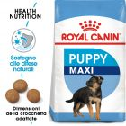 Royal Canin Maxi Puppy Crocchette per cani