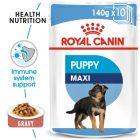 Royal Canin Maxi Puppy Hrană umedă