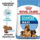 Royal Canin Maxi Starter Mother & Babydog