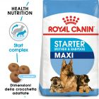 Royal Canin Maxi Starter Mother & Babydog