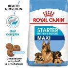 Royal Canin Maxi Starter Mother & Babydog Hrană uscată