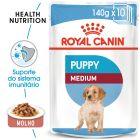 Royal Canin Medium Puppy comida húmida para cães