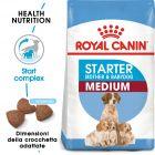 Royal Canin Medium Starter Mother & Babydog Crocchette per cani