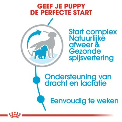 Royal Canin Medium Starter Mother & Babydog Hondenvoer