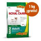 Royal Canin Mini Adult 9 kg en oferta: 8 + 1 kg ¡gratis!