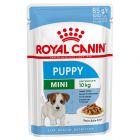 Royal Canin Mini Puppy comida húmida para cães