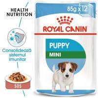 Royal Canin Mini Puppy Hrană umedă
