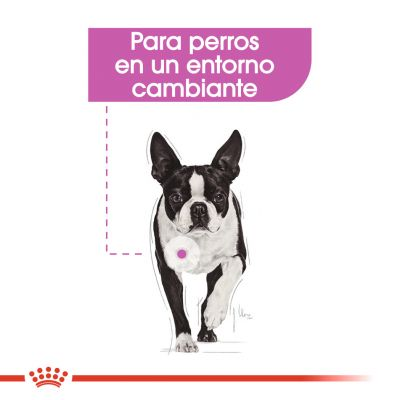 Royal Canin Mini Relax Care