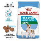 Royal Canin Mini Starter Mother & Babydog
