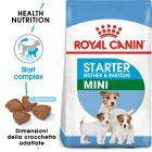 Royal Canin Mini Starter Mother & Babydog Crocchette per cani