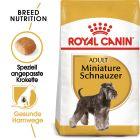 Royal Canin Miniature Schnauzer Adult pour chien