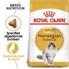 Royal Canin Noorse Boskat Adult - Kattenvoer