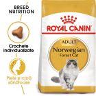 Royal Canin Norwegian Forest Cat Adult Hrană uscată