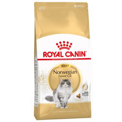 Royal Canin Norwegische Waldkatze Adult