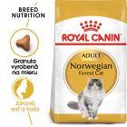 Royal Canin Nórska lesná mačka