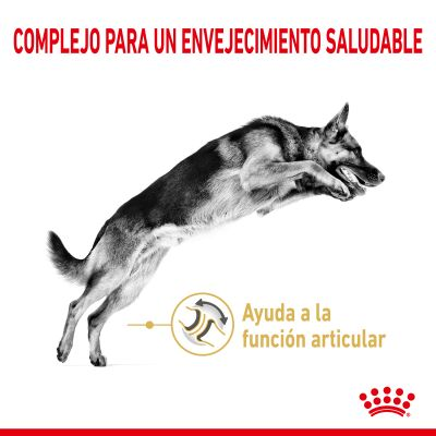 Royal Canin Pastor Alemán Adult 5+